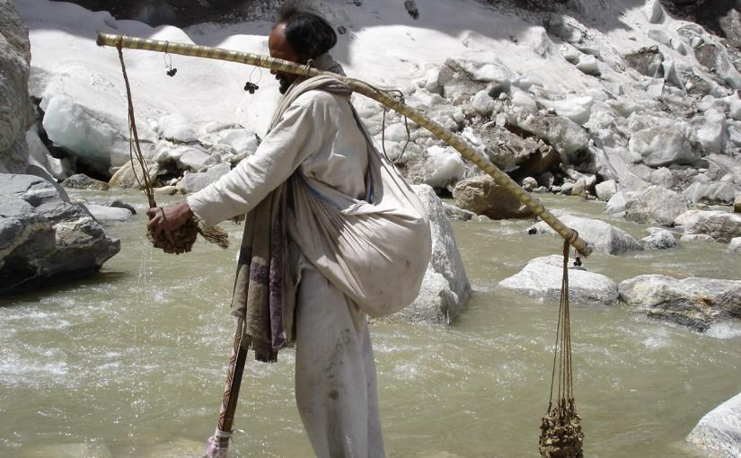 Source du Gange 386