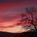 coucher-soleil-10209-010